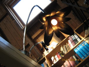 Kokerlamp